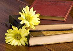 міжнародний день книжки