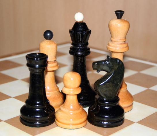 Турнір з шахматів